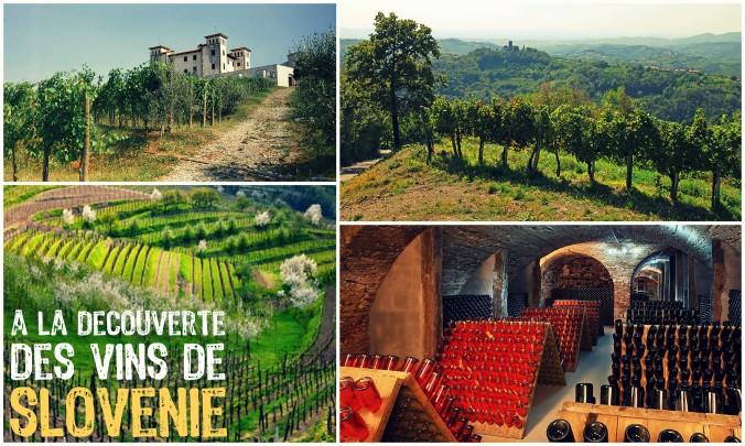 route des vins Slovénie