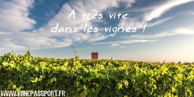 voyage oenologique wine passeport